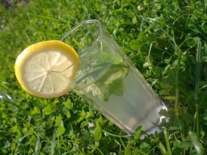 рецепт лимонада с мятой